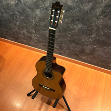Ibanez Nylon Cut Classical Guitar/Attitude Soft bag