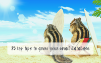 top tips to grow email database