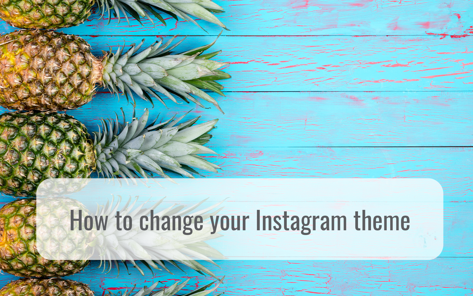 5 reasons you shouldn't delete your old instagram posts and how to change your instagram theme