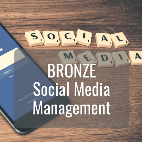 BRONZE Social Media Management