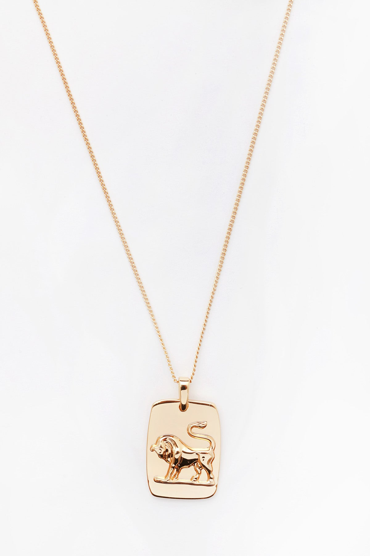 Zodiac Necklace Taurus