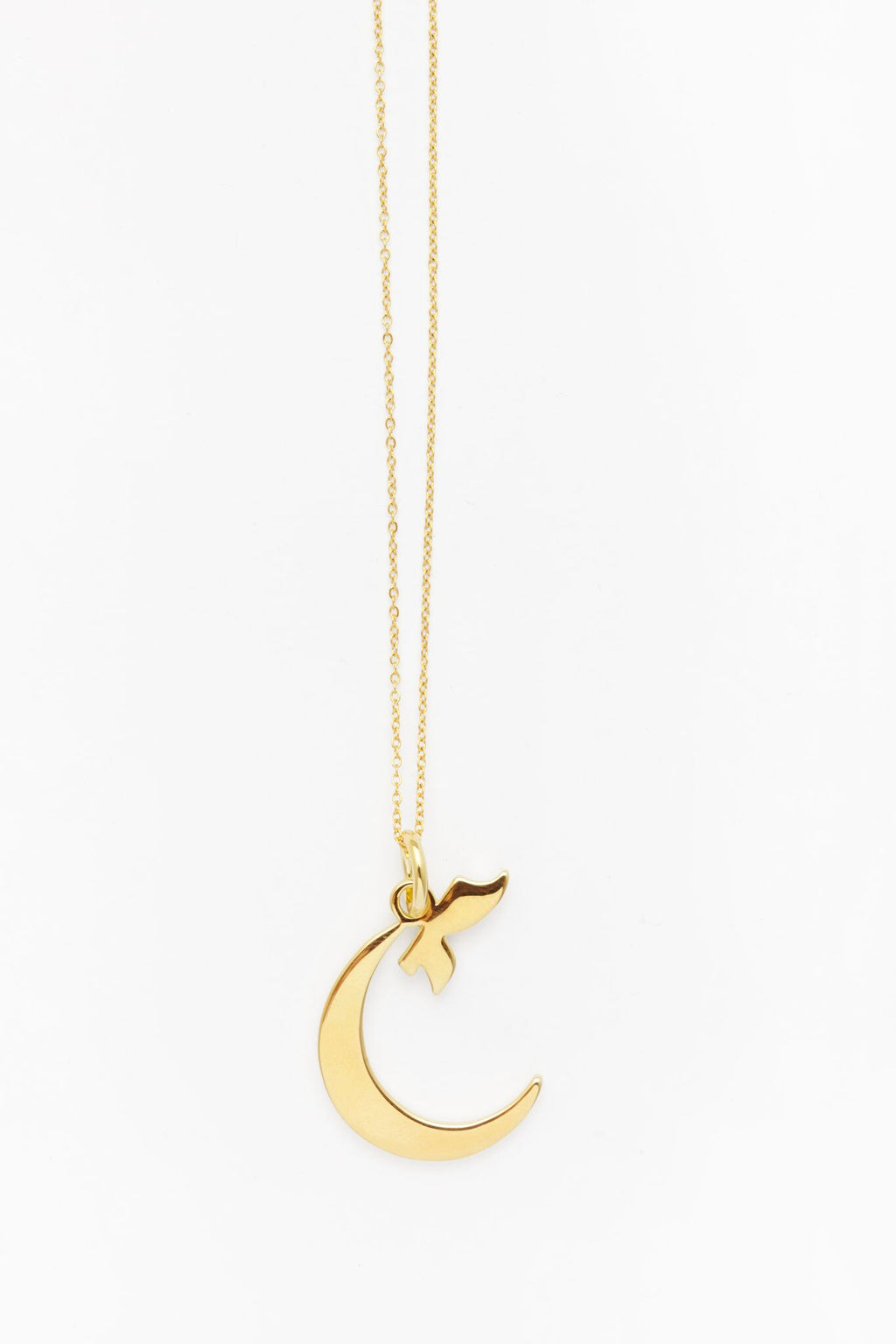 Gold Letter C Necklace