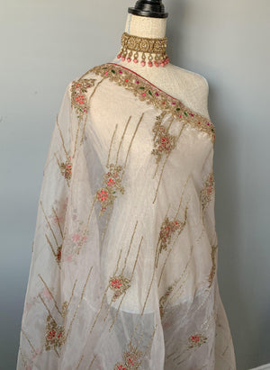 Bright Energy Organza Dupatta