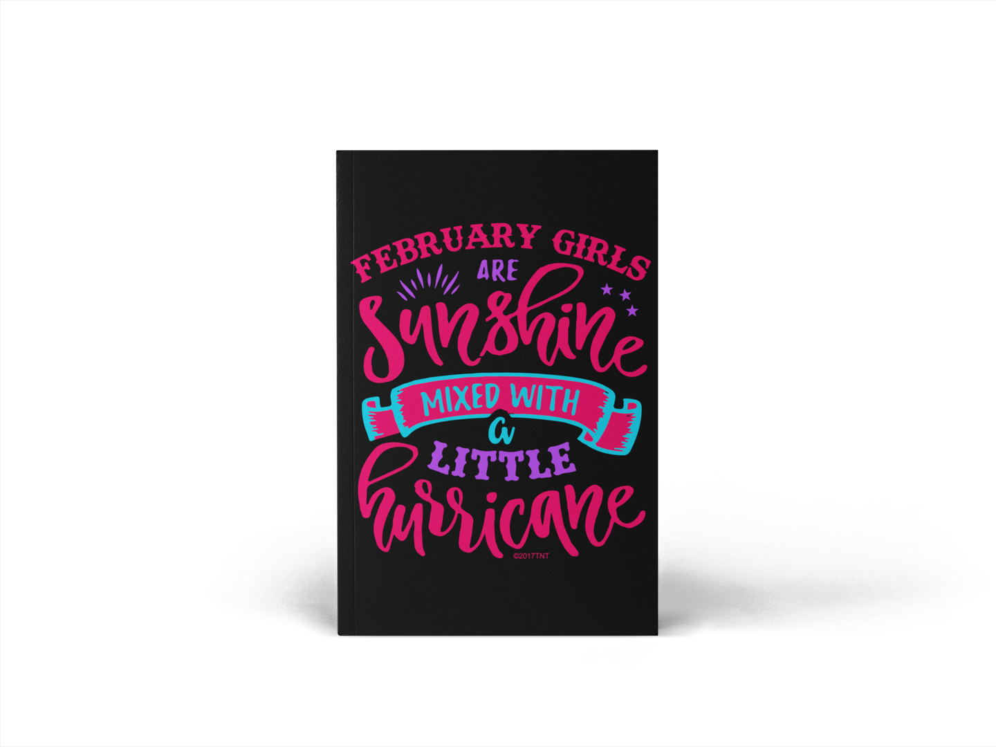 February Girls are Sunshine Mixed with a Little Hurricane 2019 Daily Planner
