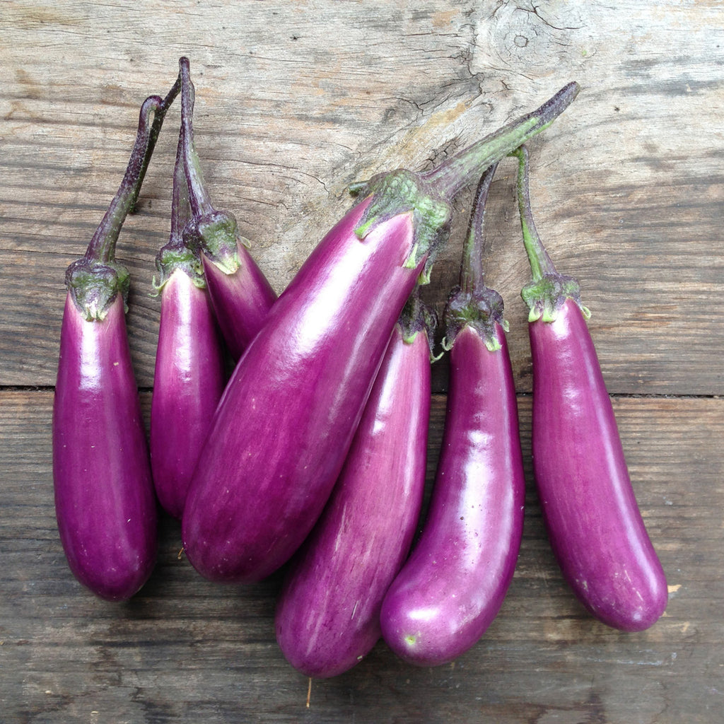 Image result for egg plant
