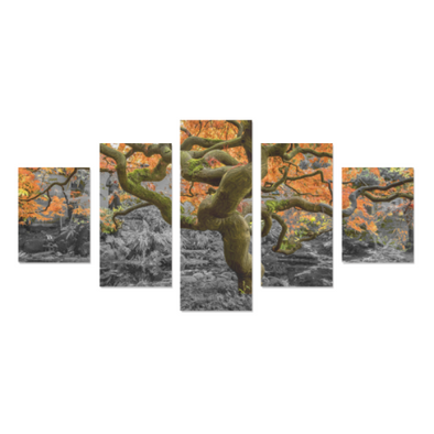 Old Wise Tree in the Forest - Canvas Wall Art - Old Wise Tree - Orange Canvas Wall Art Z (5 pieces) - Wall Art canvas prints trees