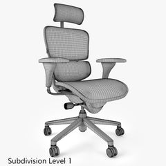 Raynor Ergohuman Office Chair 3D Model