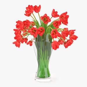 Tulips Flowers Bouquet in a Vase 3D Model
