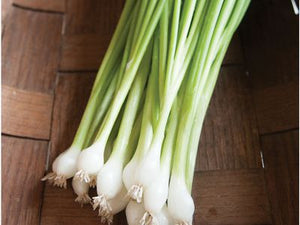 Guardsman Onions