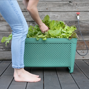 GROW Duo - All-in-one Smart Planter