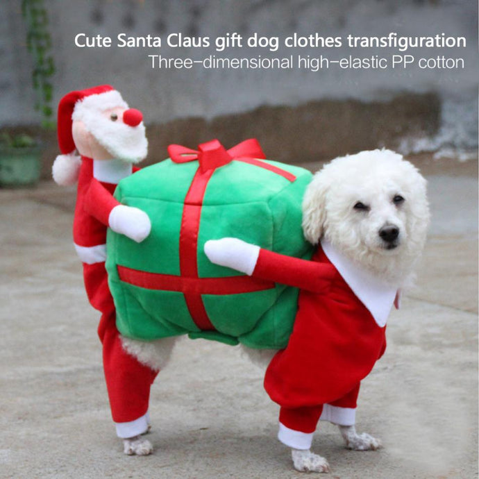 Santa with his Gift Dog Costume