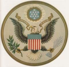 The Great Seal of The United States National Bird Bald Eagle Flag Fourth of July Patriotism