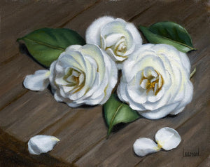 """Purity"" White Camellias by Jeanne Leemon"