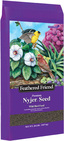 Nyjer Thistle Seed