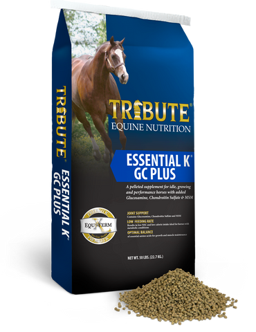 Tribute Essential K® GC Plus Horse Feed
