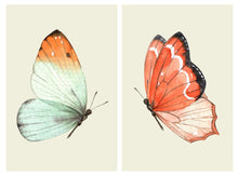 Fire & Ice Butterfly Pair