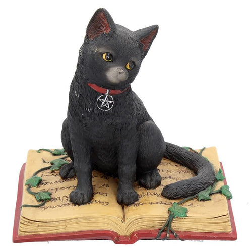 Black Cat Spell Book Figurine