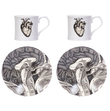 Anatomical Heart Espresso Set of 2 and Gift Box