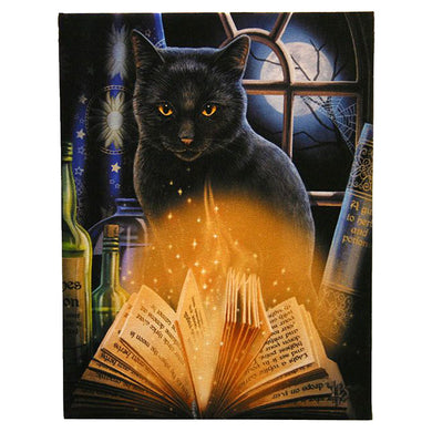 Lisa Parker Bewitched Canvas