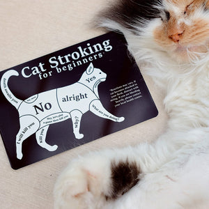 Mini Cat Stroking For Beginners 'Greet Tin Card' Sign (Seconds)