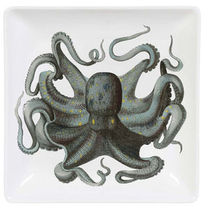 Octopus Trinket Dish and Gift Box