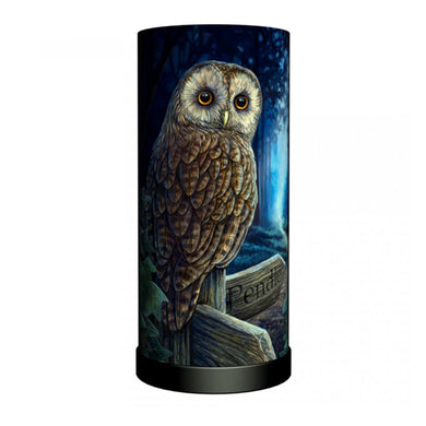 Lisa Parker Way of the Witch Pendle Lamp