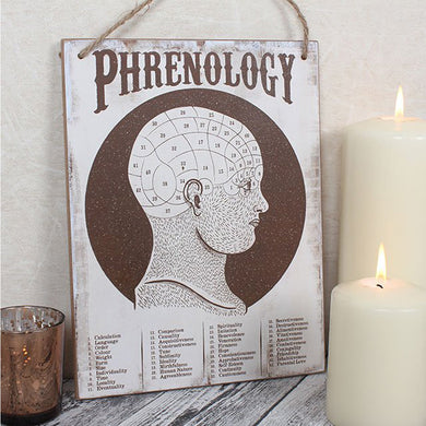 Wooden Phrenology Hanging Sign