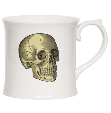 Anatomical Skull Mug and Gift Box
