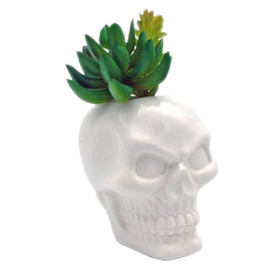 Small Ceramic Skull Garden Wall Planter