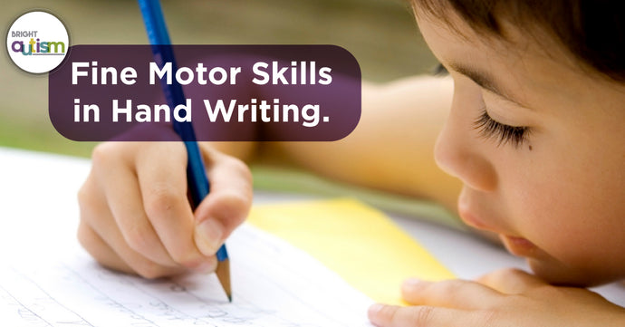 Fine Motor Skills & Handwriting