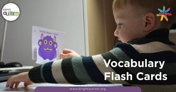 Vocabulary Flash Cards and Children with Autism