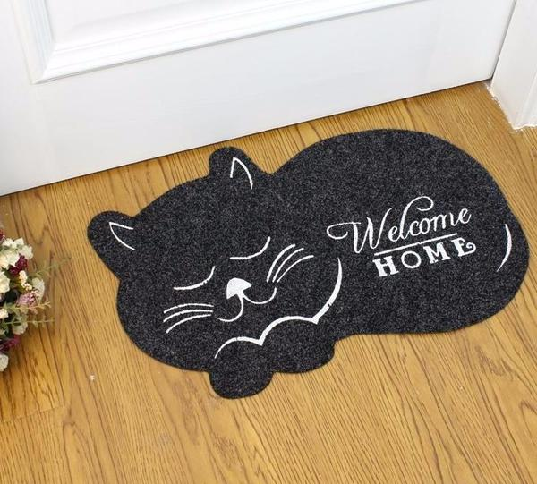 Water Absorption Cat Mat