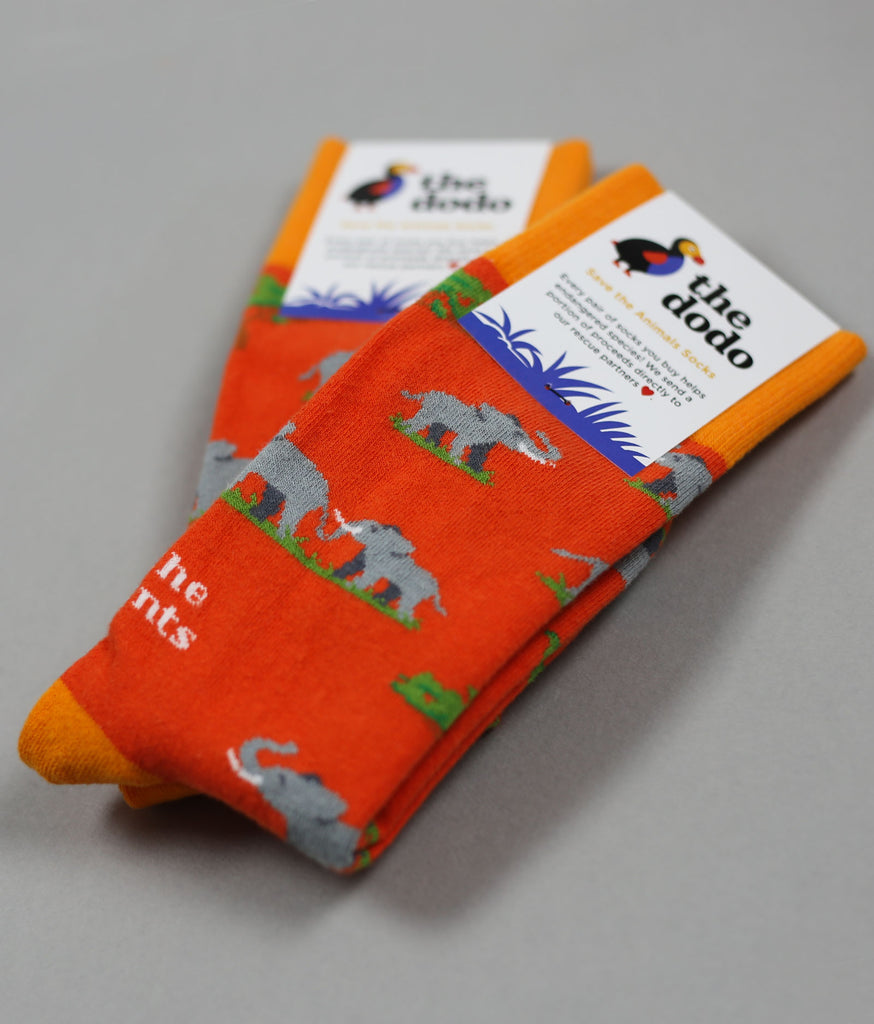 The Elephant - The Dodo - Sock Club Store