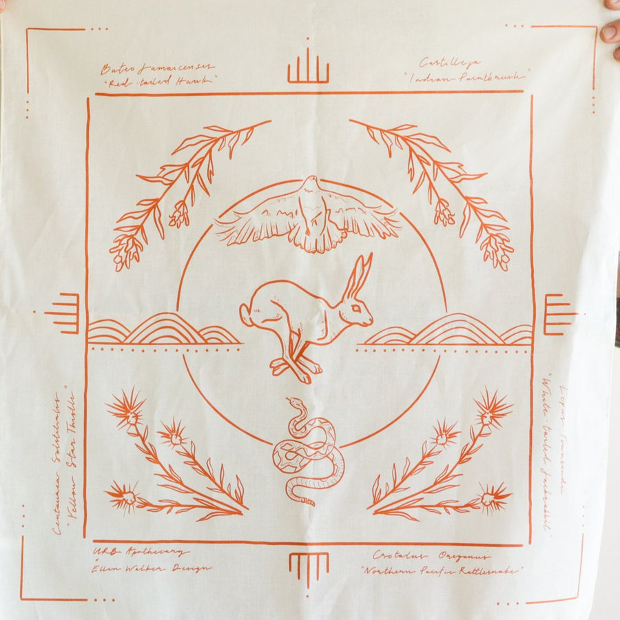 FIELD GUIDE COLLABORATIVE BANDANA