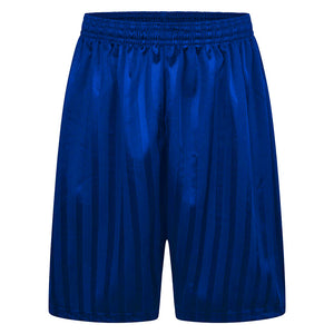 Shadow Stripe P.E Football Shorts Royal