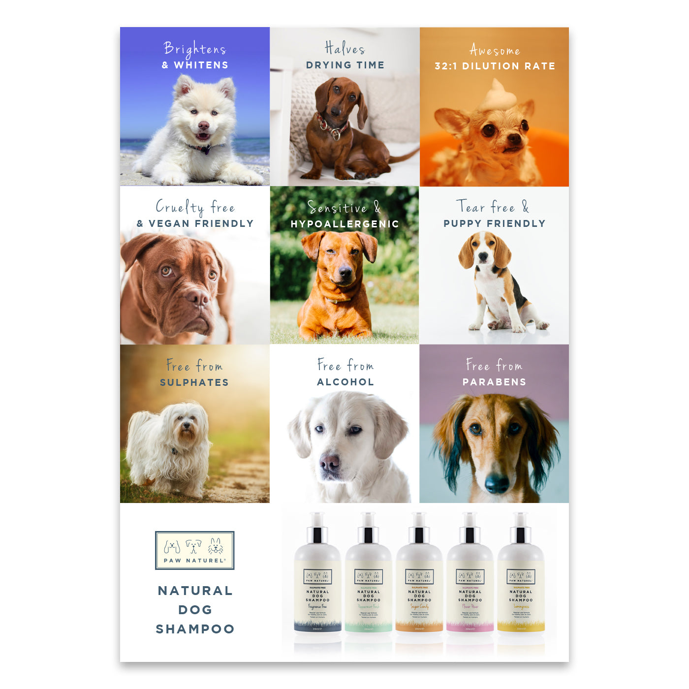 Paw Naturel Point Of Sale A3 Poster