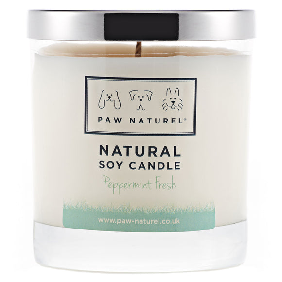 Peppermint natural soy candle