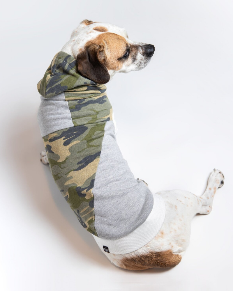 The Cadet Cotton Camo Hoodie for Long Dogs (Made in the USA)