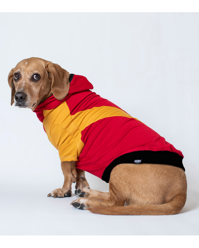 The Essey Pullover Hoodie for Long Dogs (Made in the USA)