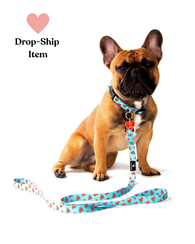 Melting Heart Collar, Leash & Tag Set (Drop-Ship)
