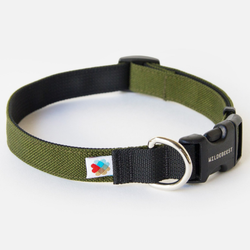 Funston Dog Collar in Olive Green (Made in the USA)