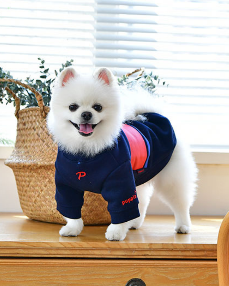 Blaze Long Sleeve Dog Pullover in Navy