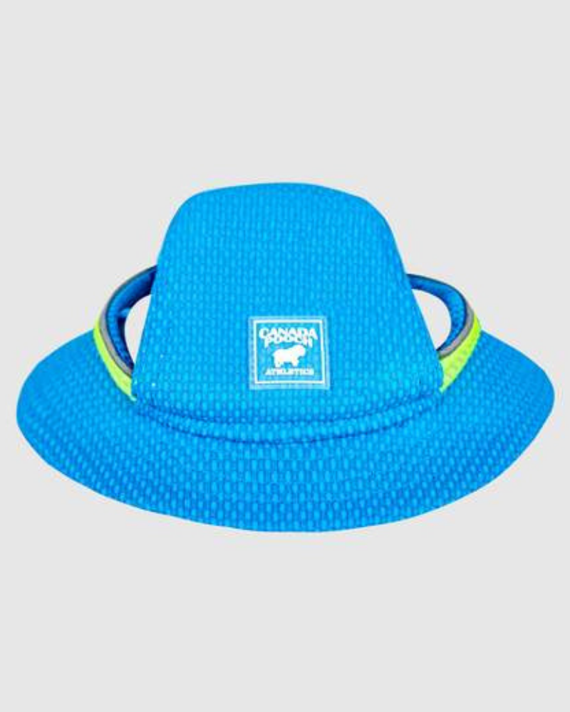 Chill Seeker Cooling Dog Hat