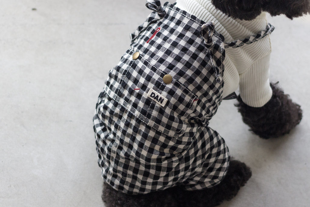 DENTISTS APPOINTMENT | Gingham Check Overall in Black & White
