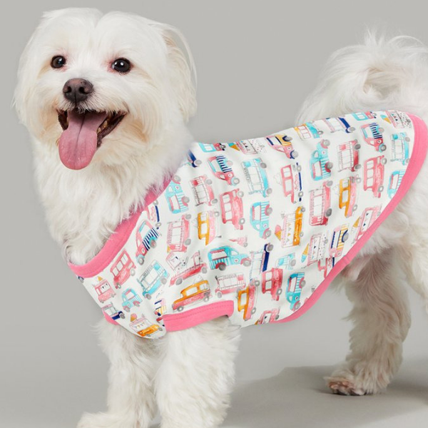 BEDHEAD | Lounge Dog T in Ice Cream Dream