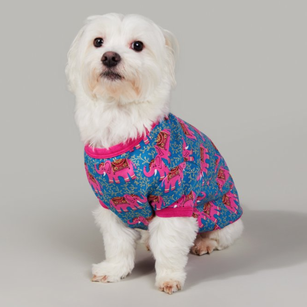 BEDHEAD | Lounge Dog T in Royal Elephant