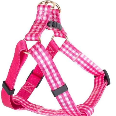 BOULEVARD | Gingham Harness in Pink