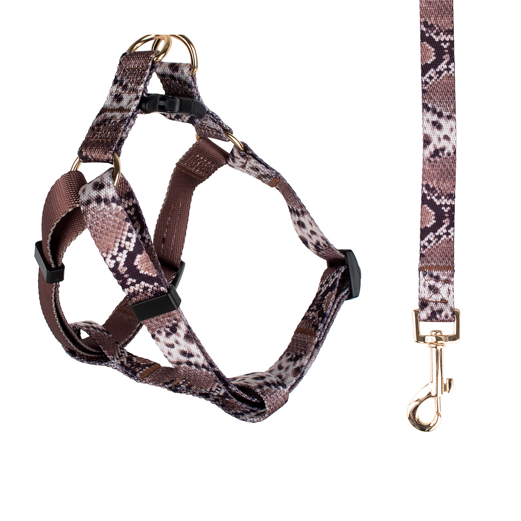 Snakeskin Harness & Leash Set (Drop-Ship)