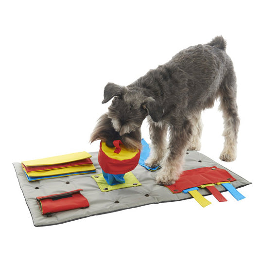 BUSTER | Activity Mat