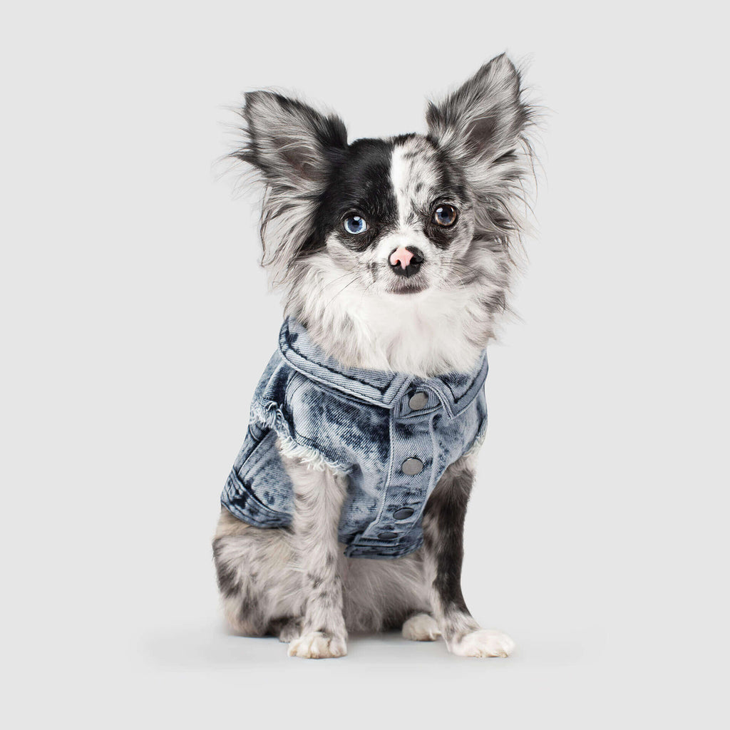 CANADA POOCH | Downtown Denim Vest